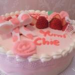 女子会用ケーキ